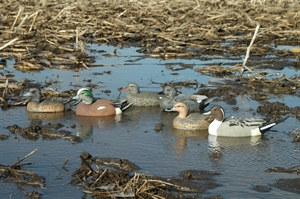 Picture of **FREE SHIPPING** Life-Size  Puddler Pack Duck Decoy 6pk by Greenhead Gear GHG Avery outdoors