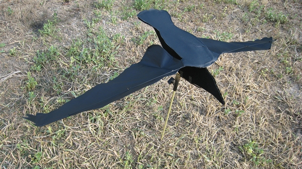Diy crow decoys