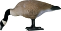 Picture of Bigfoot Feeder Canada Goose Decoys 4 Pack (BF112477)