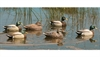 Picture of Bigfoot Mallard Duck Floaters  6 pk (BF213686)