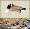 Picture of HONKER SLEEPER SHELLS - 6 pk (FA474167) by Final Approach Decoys