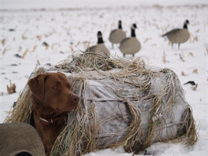 Picture of Real Snow Spray (AV01400) by Avery Outdoors Greenhead Gear GHG