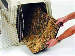 Picture of Reversible Kennel Pad by Avery Outdoor Greenhead Gear GHG