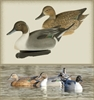 Picture of Pintail Floating Duck Decoys by Final Approach