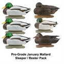 Picture of Jan. Mall Sleeper/Rester 6 pk