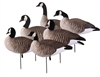 Picture of **SALE** Tim Newbold FFD Lesser Canada Goose Decoys - ACTIVE 6 pack (AV72300) by Greenhead Gear GHG Avery Outdoors