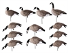 Picture of **SALE** Tim Newbold PAINTED Lesser Canada Goose Decoys - HARVESTER 12 Pack AV72323 by Greenhead Gear GHG Avery Outdoors