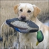 Picture of EZ Bird Dog Bumpers by Avery Outdoors Greenhead Gear GHG