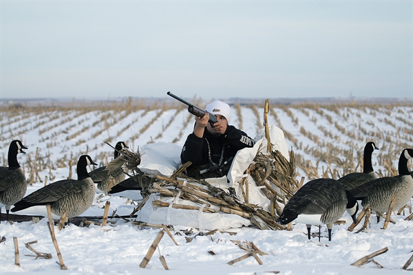 max realtree goose blind blinds banded avery hunting layout duck products greenhead outfitter pro camo gear waterfowl large