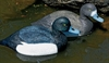 Picture of SUPER MAGNUM SWIVEL BLUEBILL Duck Decoys 6pk (B2SM) by G&H Decoys