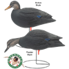 Picture of Black Duck FEEDER Fullbody Duck Decoys (AV70805) by Greenhead Gear GHG Avery Outdoors