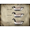 Picture of HONKER FLOATING GOOSE DECOYS 3 pk. (474152) by Final Approach Decoys
