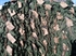 Picture of Ghillie Pants in Winter Wheat Green by RS