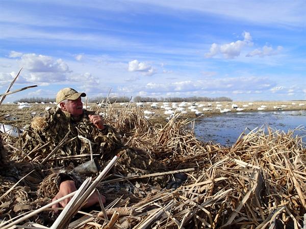 Prairiewind Decoys Ghillie Pants In Fall Corn Wheat Camo