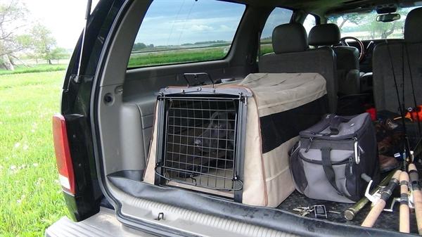 Switchback Dog Kennel