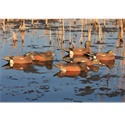 Picture for category Wigeon Decoys