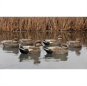 Picture for category Gadwall Duck Decoys