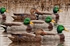 Picture of ***FREE SHIPPING*** ATM Green Machine Mallard Duck Call (Double Reed) by Zink Calls