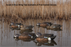 Picture of **SALE** Top Flight Blue Winged Teal Duck Decoys 6pk by Avian X Decoys