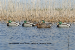 Picture of **FREE SHIPPING** Pro-Grade Sleeper/Rester Mallard Duck Decoys 6 Pack by Greenhead Gear GHG Avery Outdoors