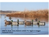 Picture of **FREE SHIPPING** Pro-Grade Active Mallard Duck Decoys 6 Pack  by Greenhead Gear GHG Avery Outdoors
