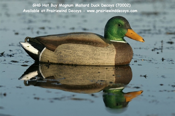 Prairiewind Decoys Free Shipping Hot Buy Magnum
