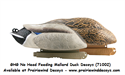 Picture of NO HEAD FEEDER 2pk