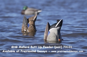 Picture of **FREE SHIPPING** PRO-GRADE LIFESIZE MALLARD BUTT-UP FEEDER DUCK DECOYS 2pk by Greenhead Gear GHG