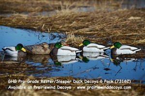 Picture of **FREE SHIPPING**  Pro-Grade January Mallard Duck Decoys Sleeper/Rester 6pk (AV73162) by Greenhead Gear GHG Avery