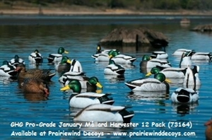 Picture of **FREE SHIPPING**  Pro-Grade January Mallard Harvester 12 pack (AV73164) by Greenhead Gear GHG Avery Outdoors