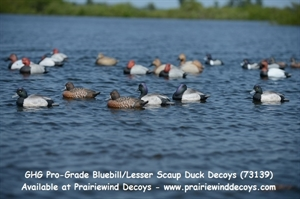 Picture of **FREE SHIPPING** Pro-Grade Bluebill/Lesser Scaup Duck Decoys 6 pk (AV73139) by Greenhead Gear GHG Avery Outdoors