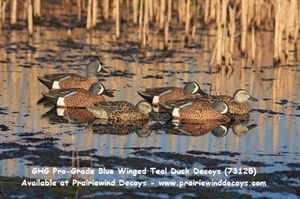 Picture of **FREE SHIPPING** Pro-Grade Blue Winged Teal Duck Decoys by Greenhead Gear GHG Avery Outdoors
