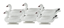 Picture of Snow Floater 6pk