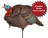 Picture of  **FREE SHIPPING** Jake Turkey Decoy (12500) by Dakota Decoys