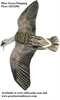 Picture of **SALE** Sillosocks Blue Goose Flapping Flyer Decoy by Sillosock Decoys