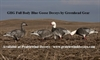 Picture of **FREE SHIPPING** Full Body BLUE Goose FEEDER Decoys 6 pk (AV71198) by Greenhead Gear GHG
