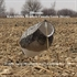 Picture of **FREE SHIPPING** Knockdown Headless Canada Goose Windsock Decoys (SS1708) by Sillosocks Decoys