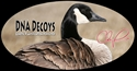 Picture for manufacturer DNA Decoys