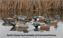 Picture of Pacific Flyway Combo Pack
