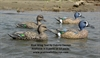 Picture of **FREE SHIPPING** Blue Wing Teal Duck Decoys 12pk (DAK18000) by Dakota Decoys