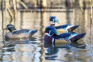 Picture of **FREE SHIPPING**  Wood Duck Decoys 6pk  (DAK17700) by Dakota Decoys