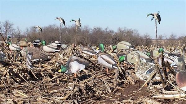 Prairiewind Decoys Dead Head Dimensional Mallard Duck