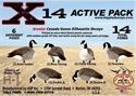 Picture of 5dz X-14 Canadas