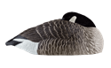 Picture for category Honker Shells