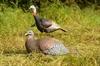 Picture of **FREE SHIPPING** Laydown Hen/Jake Combo Turkey Decoys - Eastern by Greenhead Gear GHG