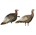 Picture of Merriam Turkey Lookout/Jake Combo - AVX8009