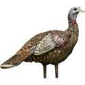 Picture of LOOKOUT TURKEY HEN - AVX8006
