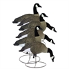 Picture of **FREE SHIPPING**  Full Size Full Body CANADA Goose Decoys by Higdon Decoys