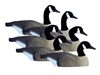 Picture of **FREE SHIPPING** STANDARD HALF SHELL CANADA Goose Decoys 6pk by Higdon Decoys