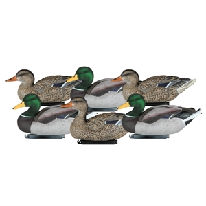 Picture of **FREE SHIPPING** Packable Mallard Floater Duck Decoys by Dakota Decoys